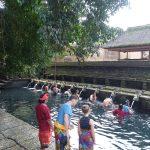 バリ島の魅力 パワースポット ~ティルタウンプル寺院~